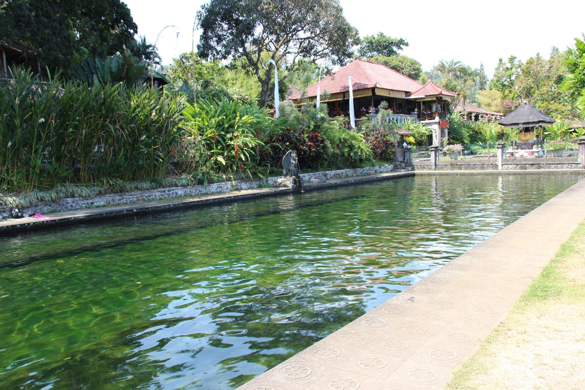 Spring water pools at Tirta Gangga Water Palace, Bali