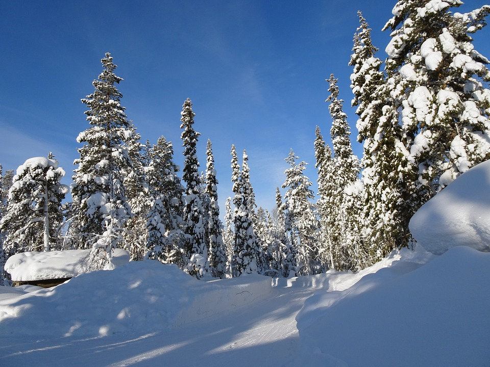 Lapland: Dreaming Of A White Christmas? Why It's Time To Start Saving
