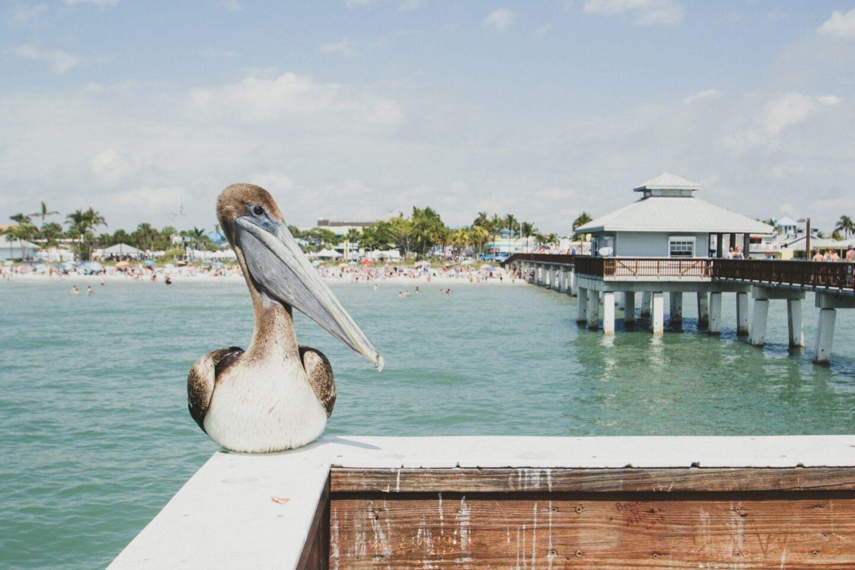 USA: 5 Fun Places To Visit In Florida